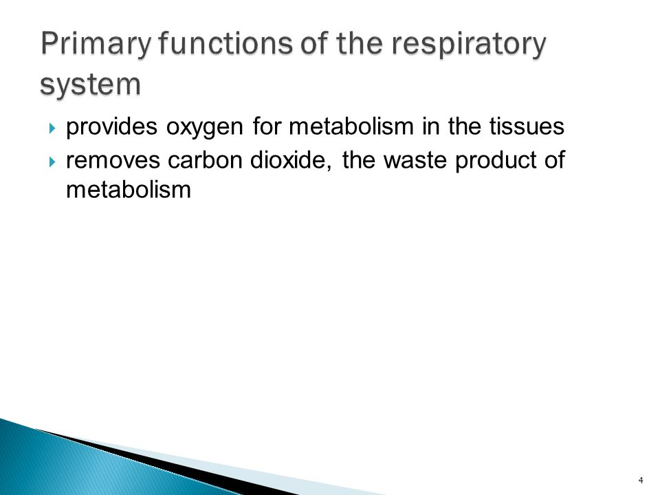  provides oxygen for metabolism in the tissues  removes carbon dioxide, the waste product of metabolism 4
