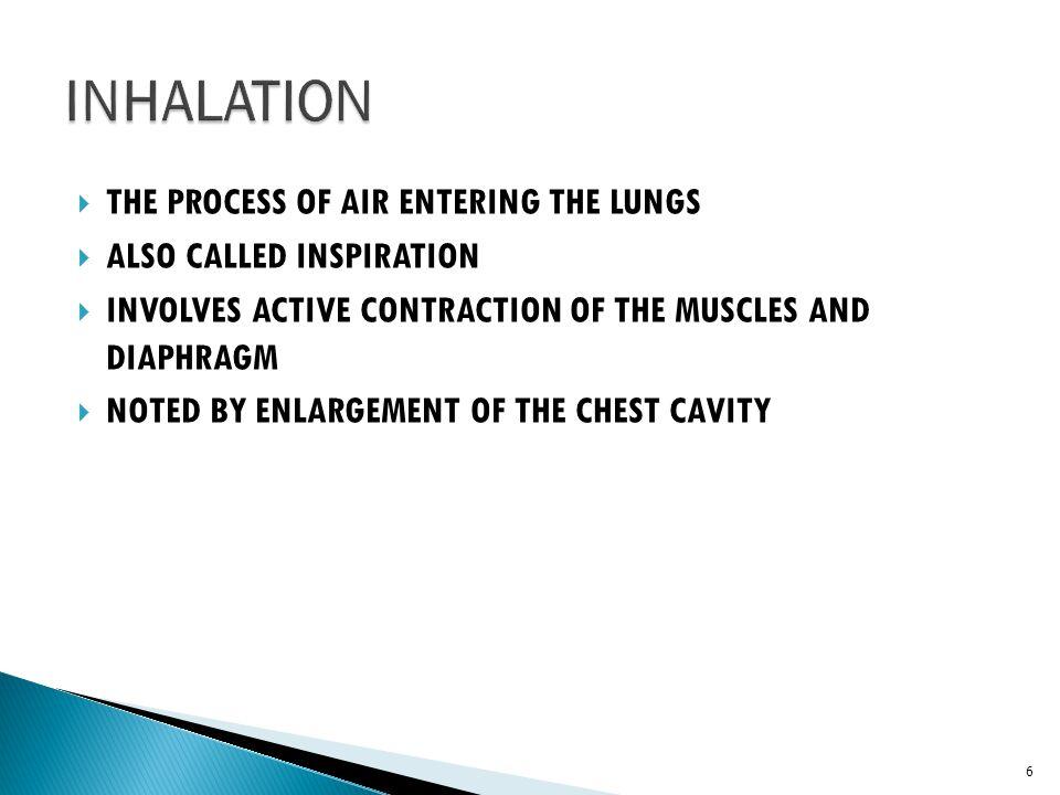  Bronchitis  Productive Cough  External Dyspnea  Wheezing  Elevated RBC  Cor Pulmonale- dyspnea, cyanosis, peripheral edema, blue bloater 386