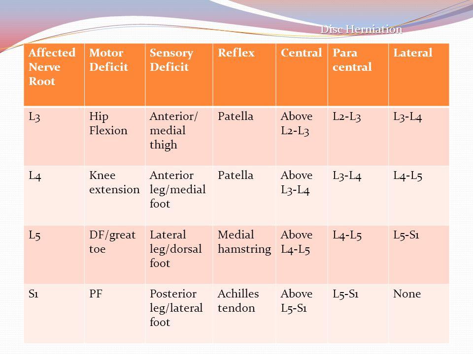 Affected Nerve Root Motor Deficit Sensory Deficit ReflexCentralPara central Lateral L3Hip Flexion Anterior/ medial thigh PatellaAbove L2-L3 L2-L3L3-L4