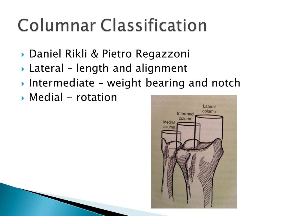  Daniel Rikli & Pietro Regazzoni  Lateral – length and alignment  Intermediate – weight bearing and notch  Medial - rotation