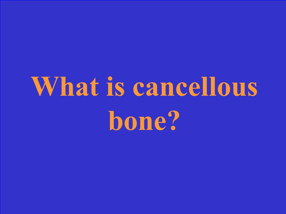 This type of bone is strong but light and resembles a sponge.