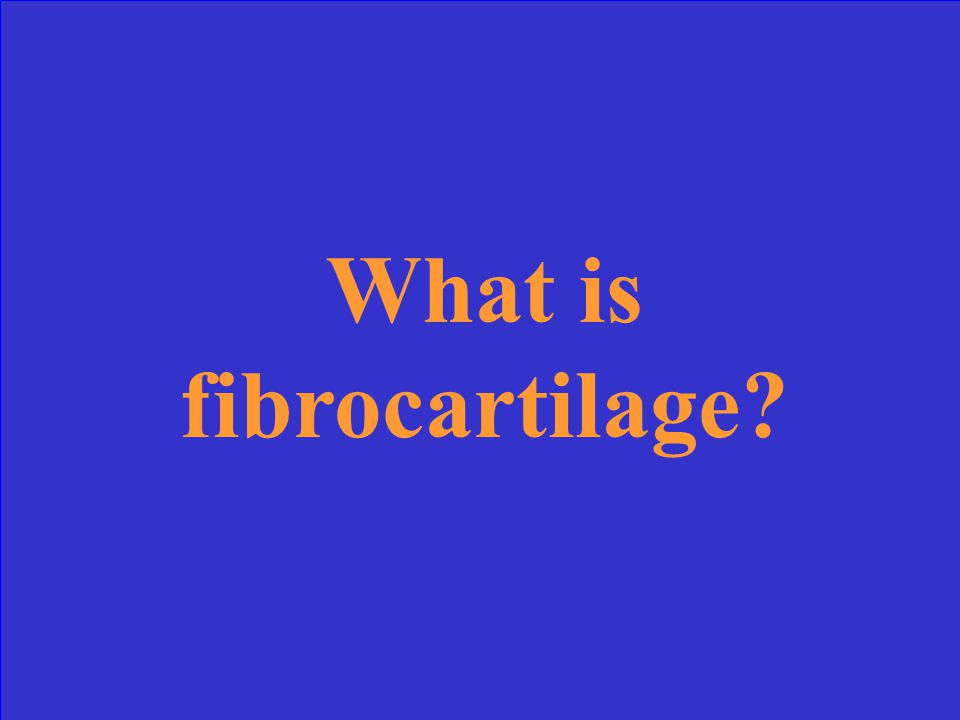 This cartilage usually merges with hyaline cartilage and can be found in knee joints, intervertebral spaces, and between bones of pelvic girdle.