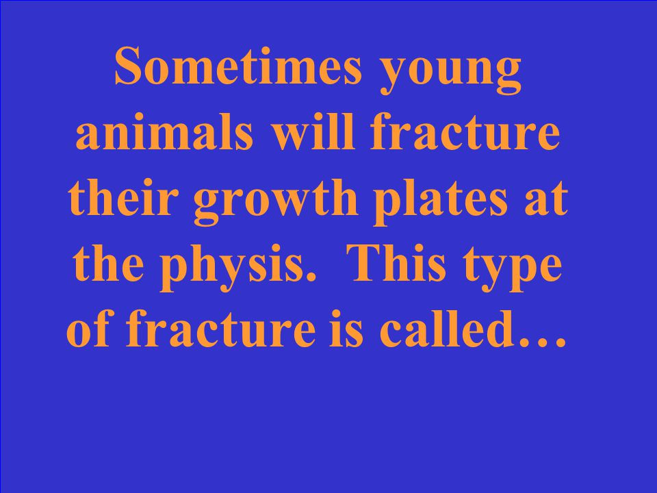What is a greenstick fracture?