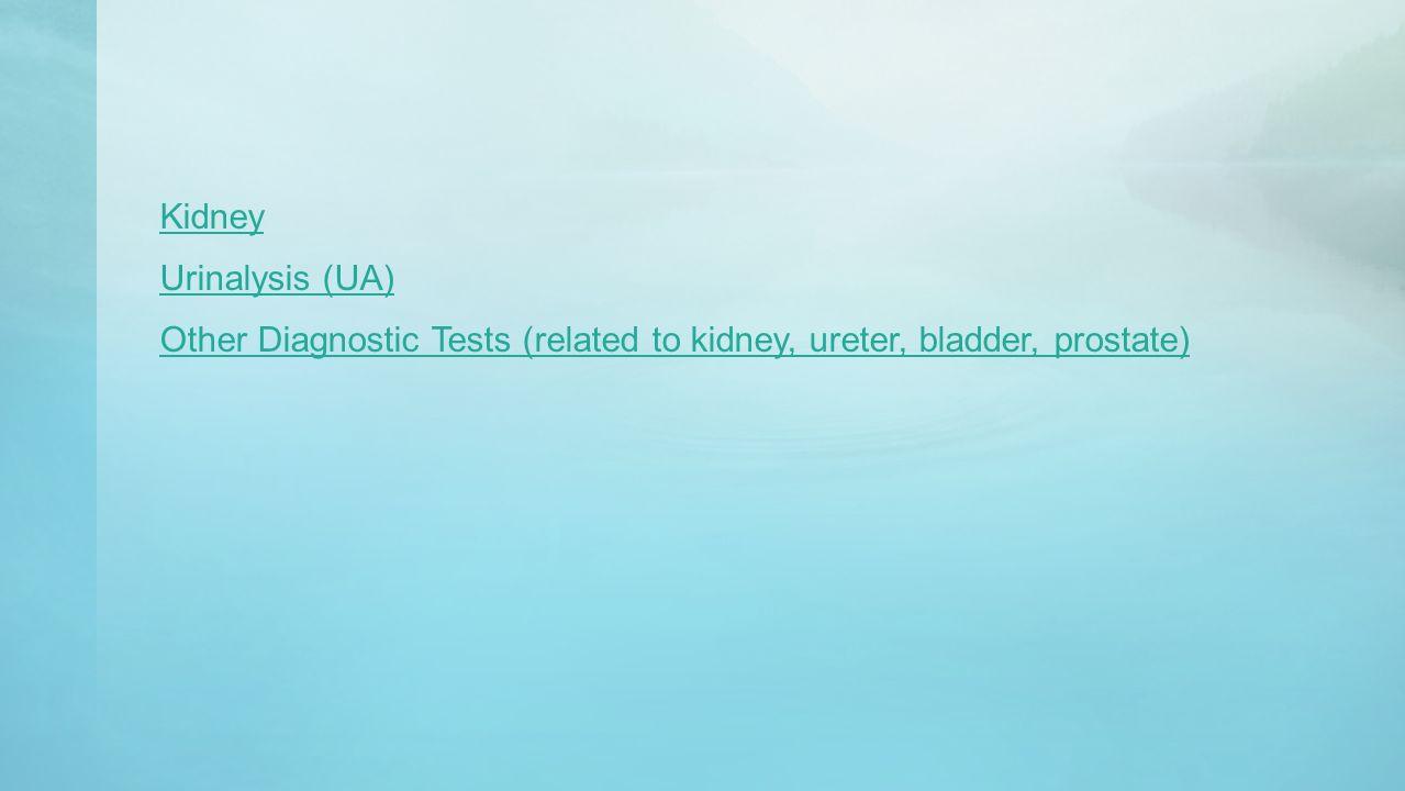 Kidney Urinalysis (UA) Other Diagnostic Tests (related to kidney, ureter, bladder, prostate)
