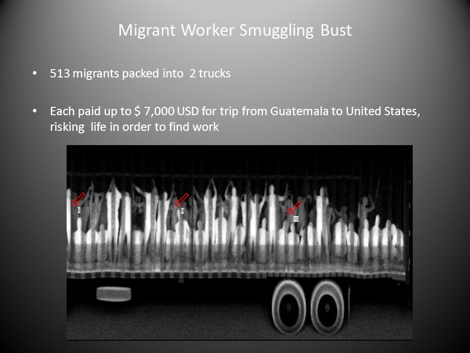 Migrant Worker Smuggling Bust 513 migrants packed into 2 trucks Each paid up to $ 7,000 USD for trip from Guatemala to United States, risking life in order to find work