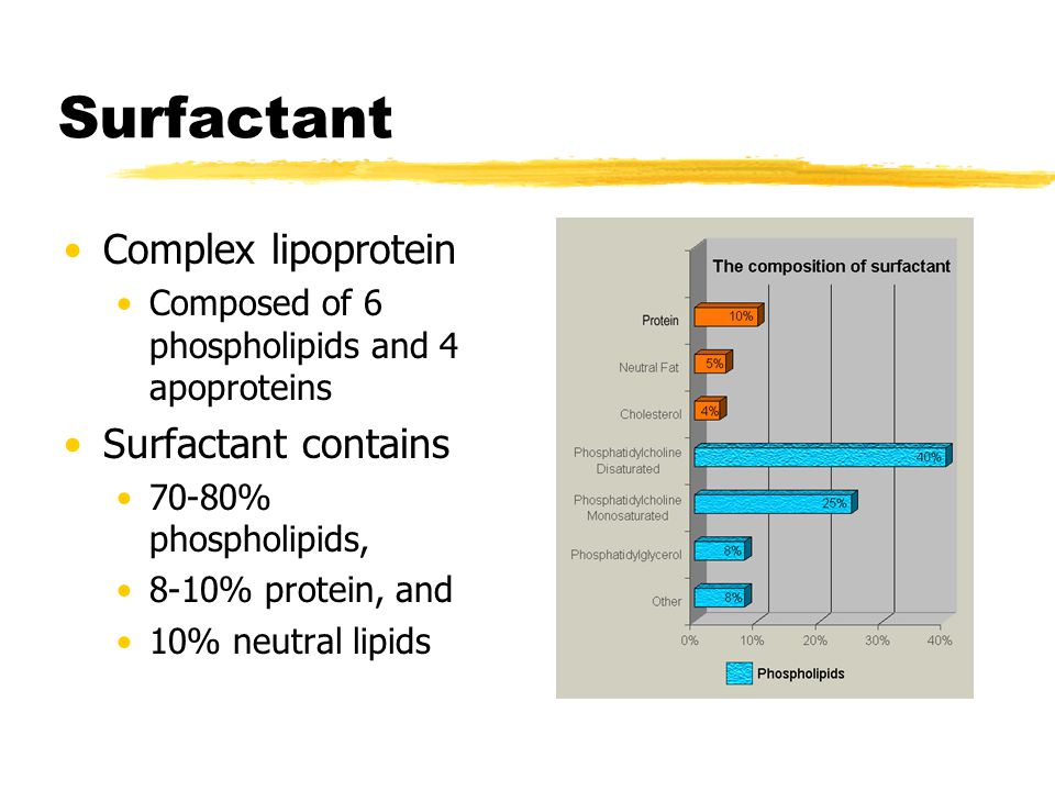 Surfactant Complex lipoprotein Composed of 6 phospholipids and 4 apoproteins Surfactant contains 70-80% phospholipids, 8-10% protein, and 10% neutral