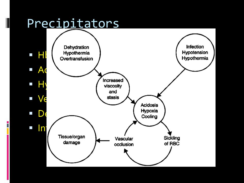 Precipitators  HbF  Acidosis  Hypoxemia  Venous stasis  Dehydration  Infections