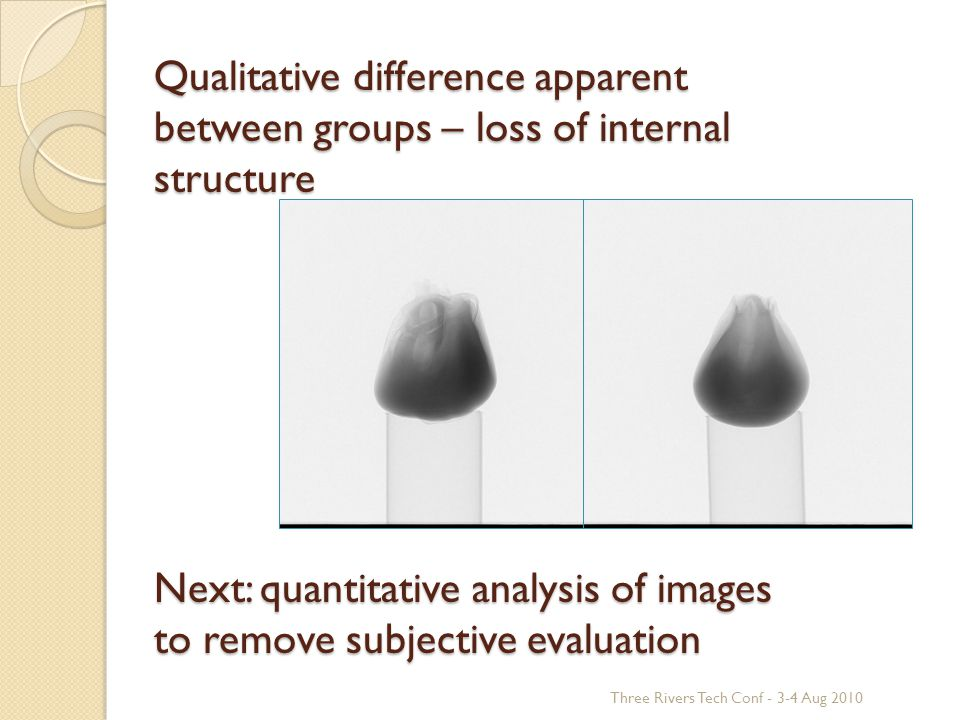 Qualitative difference apparent between groups – loss of internal structure Next: quantitative analysis of images to remove subjective evaluation Three Rivers Tech Conf - 3-4 Aug 2010