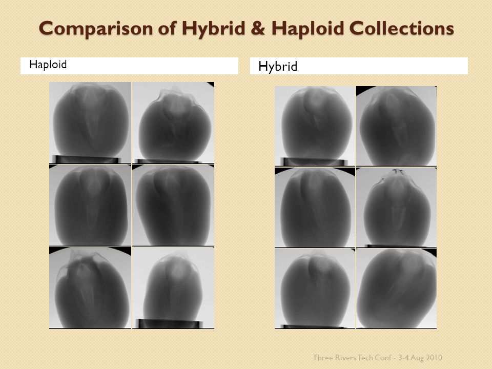 Comparison of Hybrid & Haploid Collections Haploid Hybrid Three Rivers Tech Conf - 3-4 Aug 2010
