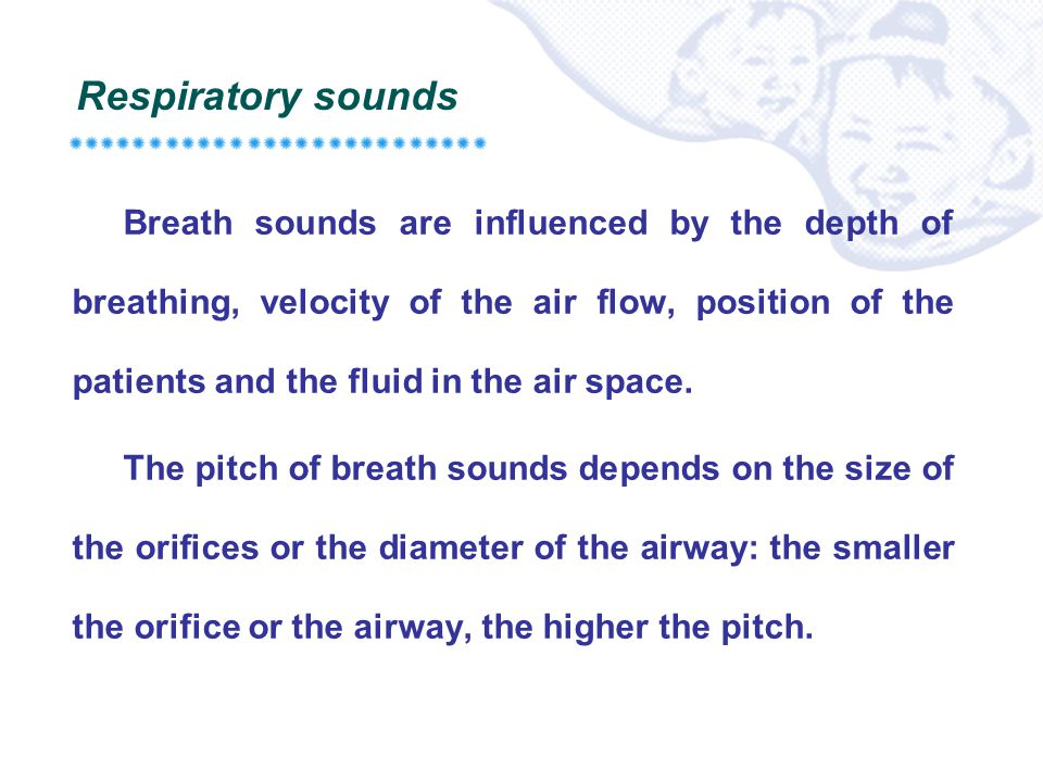 Respiratory sounds Breath sounds are influenced by the depth of breathing, velocity of the air flow, position of the patients and the fluid in the air