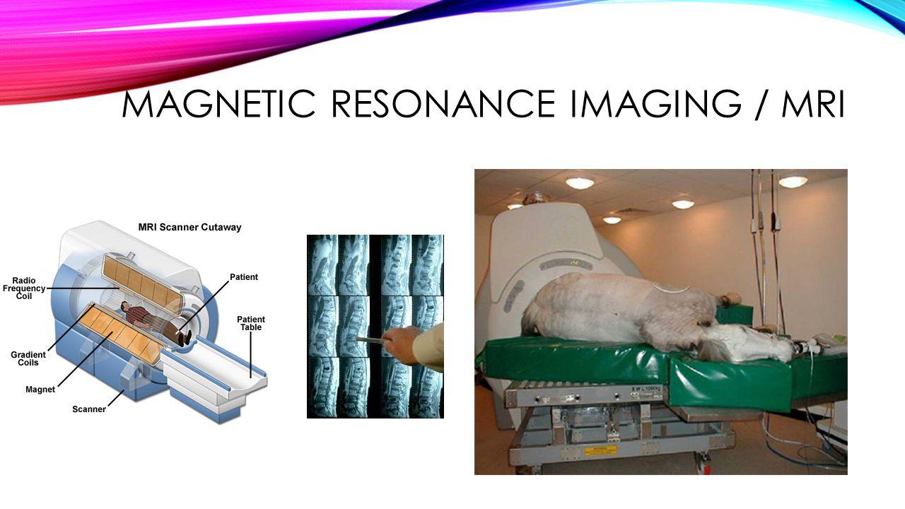 MAGNETIC RESONANCE IMAGING / MRI