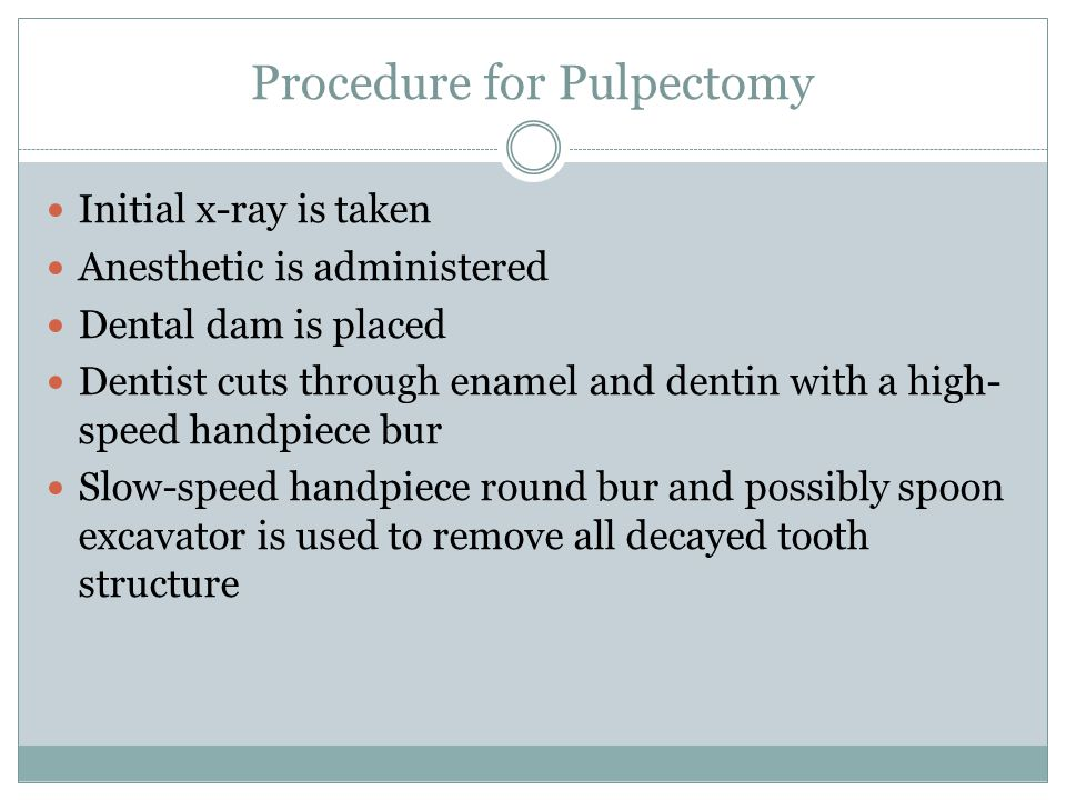Procedure for Pulpectomy Initial x-ray is taken Anesthetic is administered Dental dam is placed Dentist cuts through enamel and dentin with a high- sp