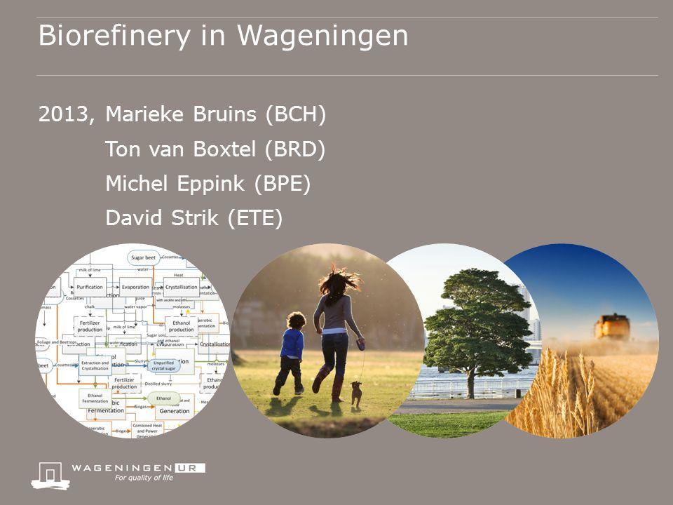 Biorefinery in Wageningen 2013, Marieke Bruins (BCH) Ton van Boxtel (BRD) Michel Eppink (BPE) David Strik (ETE)
