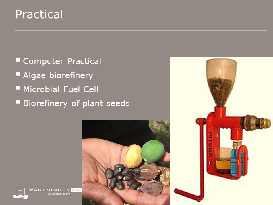 Practical  Computer Practical  Algae biorefinery  Microbial Fuel Cell  Biorefinery of plant seeds