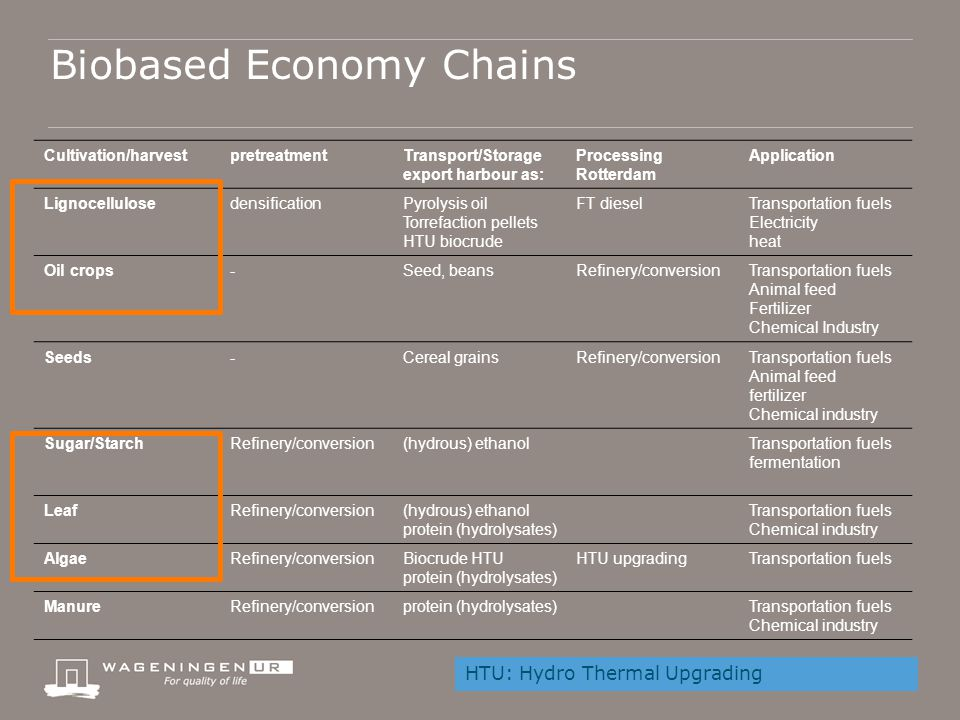 Biobased Economy Chains Cultivation/harvestpretreatmentTransport/Storage export harbour as: Processing Rotterdam Application Lignocellulosedensificati