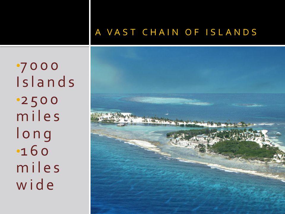 The Dutch West India Company made Curaçao a center for slave trade in 1662.Dutch West India Company 1662 The Slave Trade