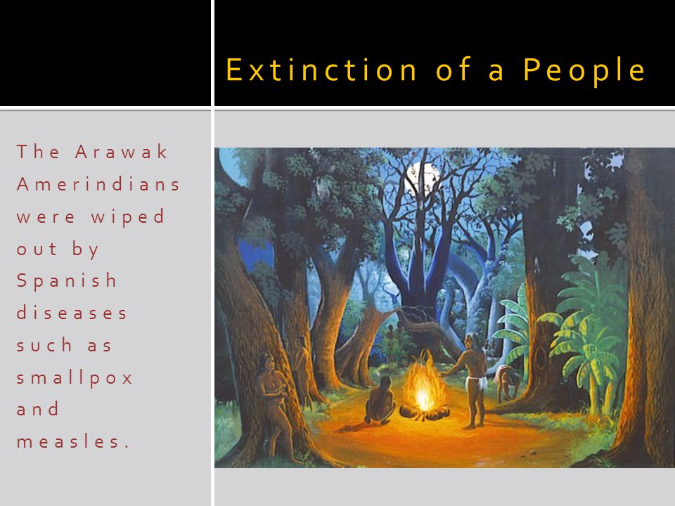 Extinction of a People The Arawak Amerindians were wiped out by Spanish diseases such as smallpox and measles.