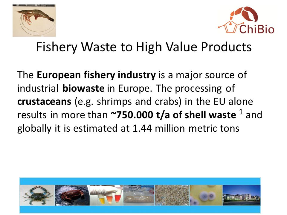 Fishery Waste to High Value Products The European fishery industry is a major source of industrial biowaste in Europe.