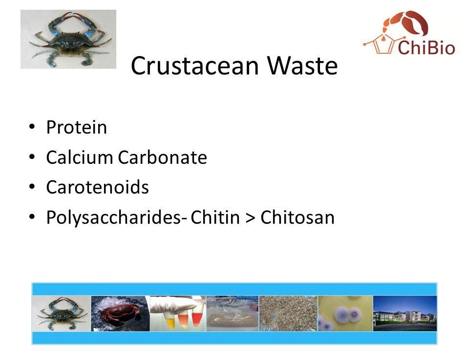 Crustacean Waste Protein Calcium Carbonate Carotenoids Polysaccharides- Chitin > Chitosan