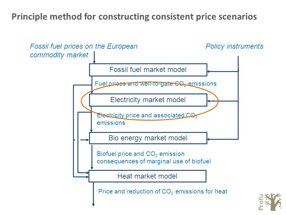 Electricity price and associated CO 2 emissions Fuel prices and well-to-gate CO 2 emissions Policy instruments Fossil fuel market model Fossil fuel prices on the European commodity market Bio energy market model Biofuel price and CO 2 emission consequences of marginal use of biofuel Electricity market model Price and reduction of CO 2 emissions for heat Heat market model Principle method for constructing consistent price scenarios