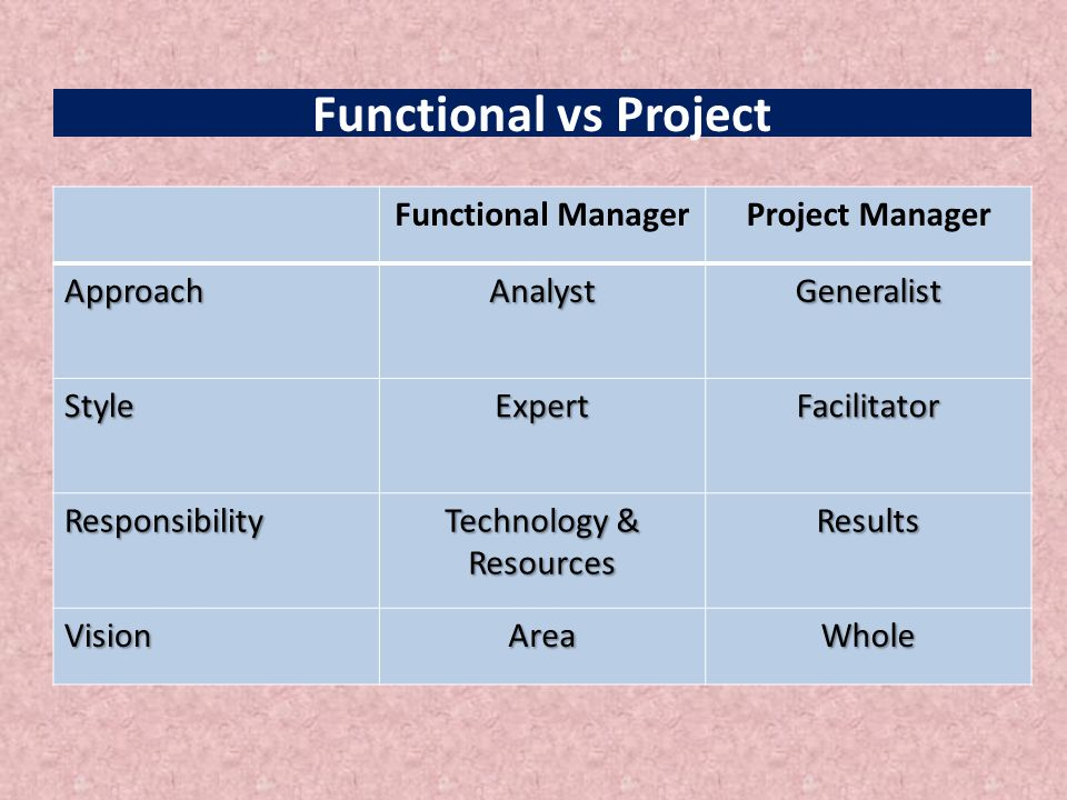 Functional vs Project Functional ManagerProject Manager ApproachAnalystGeneralist StyleExpertFacilitator Responsibility Technology & Resources Results VisionAreaWhole