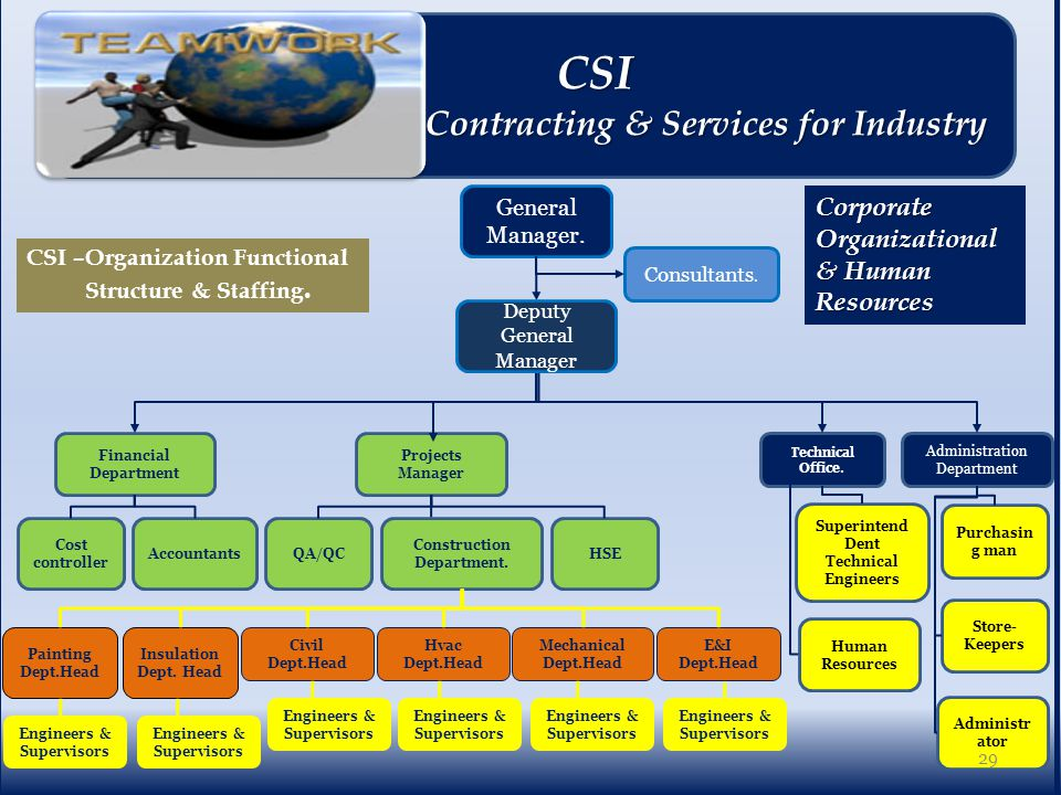CSI –Organization Functional Structure & Staffing.