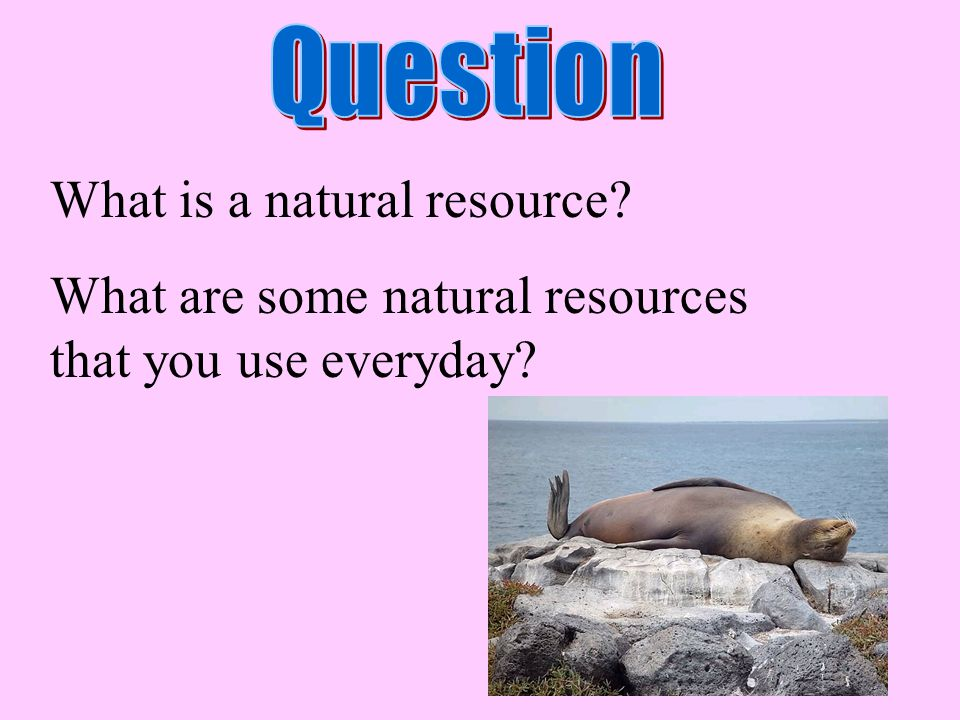 What is a natural resource? What are some natural resources that you use everyday?