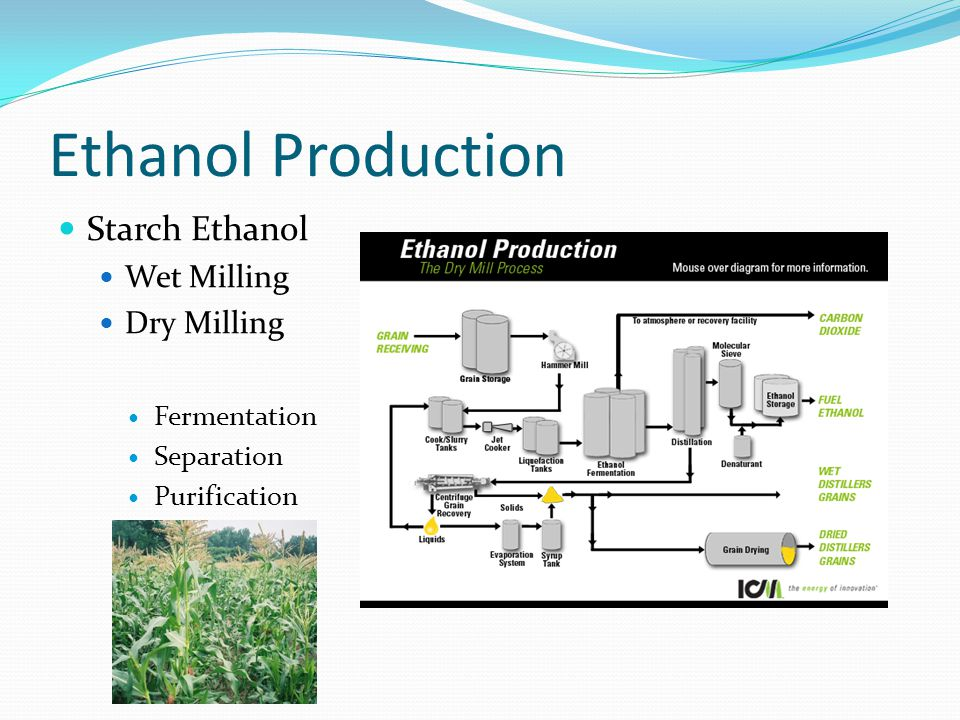 Ethanol Production Cellulosic Ethanol Have to be Pretreated Physical - grinding Chemical – acids Require the use of enzymes to break down cellulose Cellbiohydrolases Endo – β-1,4-glucanases β-glucosidases Fermentation Separation and Purification