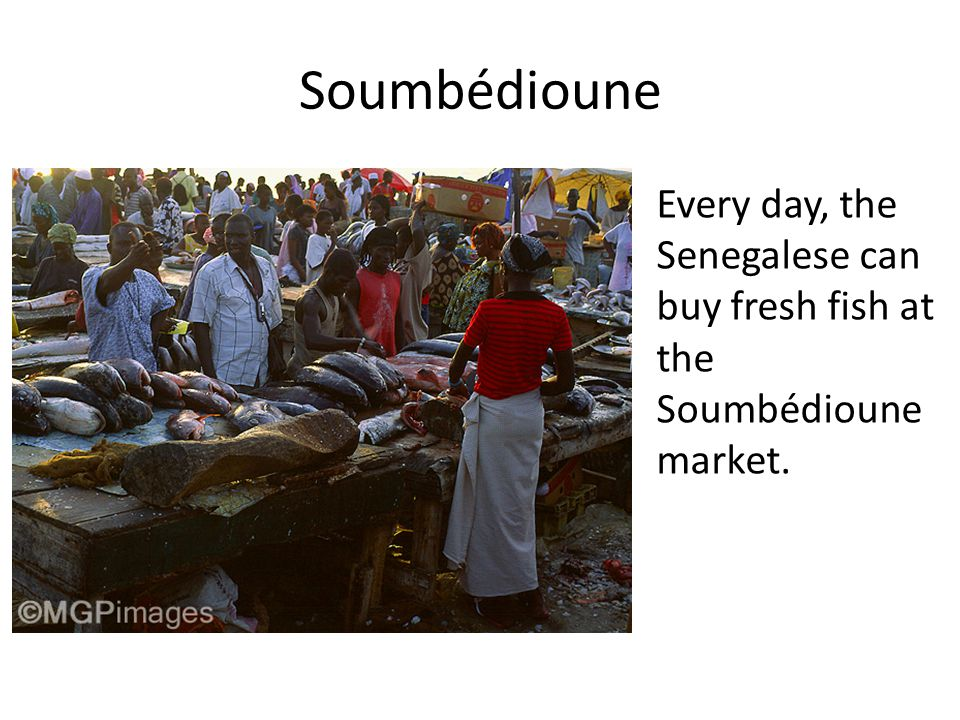 Soumbédioune Every day, the Senegalese can buy fresh fish at the Soumbédioune market.