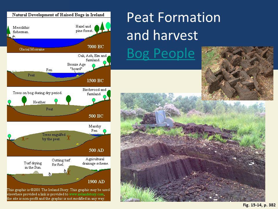 Peat Formation and harvest Bog People Bog People Fig. 15-14, p. 382