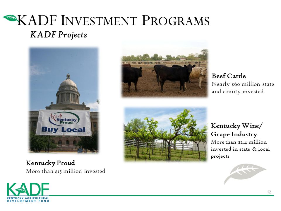 KADF Projects Kentucky Proud More than $13 million invested KADF I NVESTMENT P ROGRAMS 12 Beef Cattle Nearly $60 million state and county invested Kentucky Wine/ Grape Industry More than $2.4 million invested in state & local projects