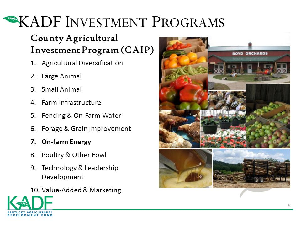 County Agricultural Investment Program (CAIP) 1.Agricultural Diversification 2.Large Animal 3.Small Animal 4.Farm Infrastructure 5.Fencing & On-Farm Water 6.Forage & Grain Improvement 7.On-farm Energy 8.Poultry & Other Fowl 9.Technology & Leadership Development 10.Value-Added & Marketing KADF I NVESTMENT P ROGRAMS 5