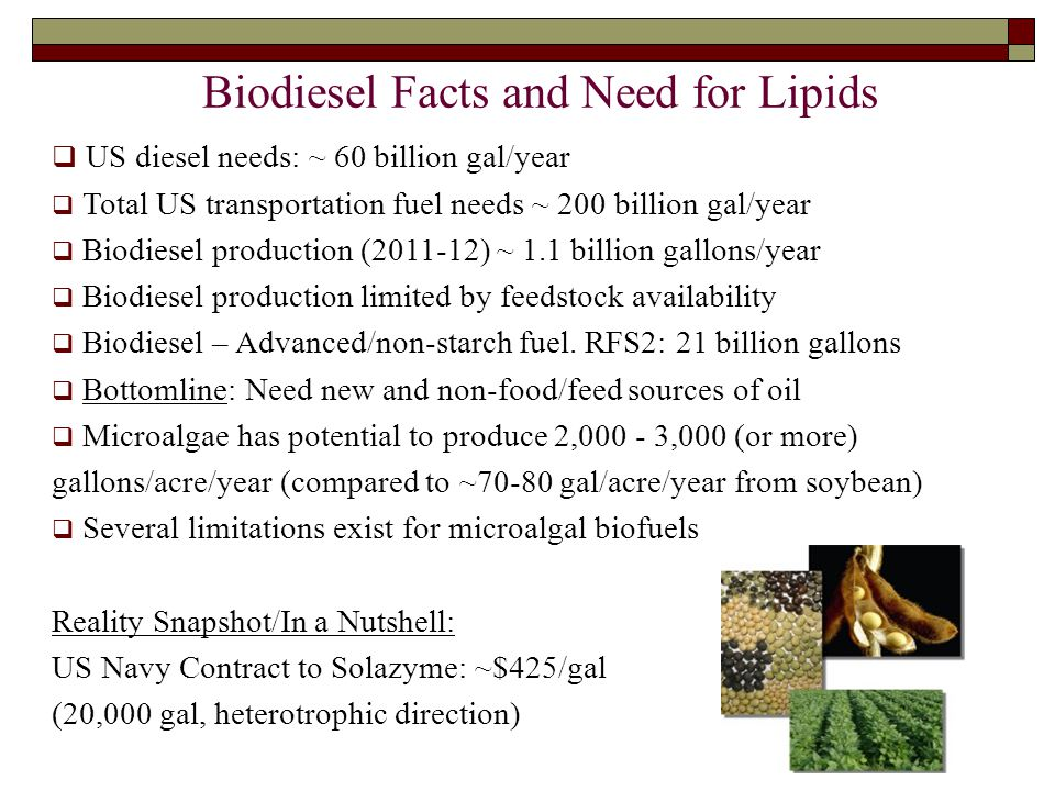 4 Biodiesel Facts and Need for Lipids  US diesel needs: ~ 60 billion gal/year  Total US transportation fuel needs ~ 200 billion gal/year  Biodiesel production (2011-12) ~ 1.1 billion gallons/year  Biodiesel production limited by feedstock availability  Biodiesel – Advanced/non-starch fuel.