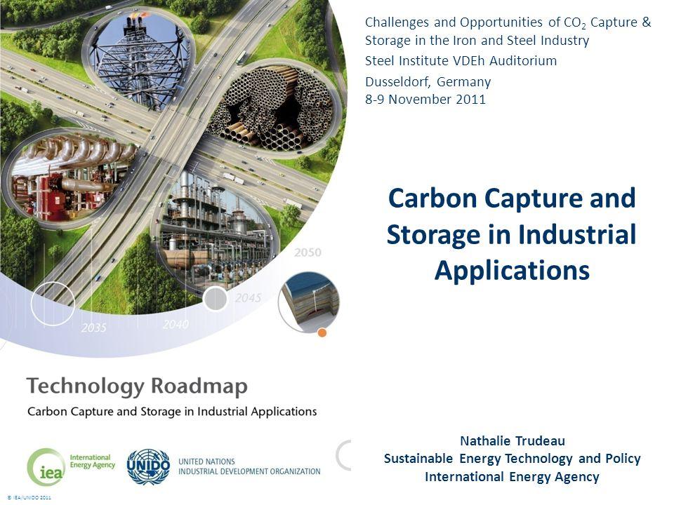 © IEA/UNIDO 2011 Focus on five industrial sectors: 1.