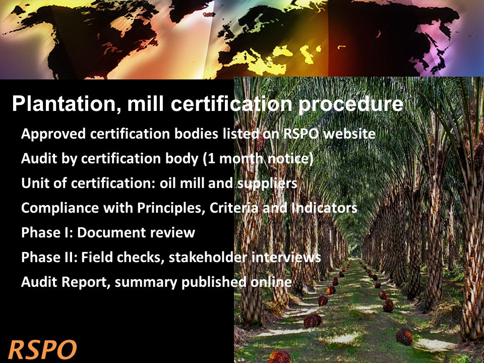 Plantation, mill certification procedure Approved certification bodies listed on RSPO website Audit by certification body (1 month notice) Unit of certification: oil mill and suppliers Compliance with Principles, Criteria and Indicators Phase I: Document review Phase II: Field checks, stakeholder interviews Audit Report, summary published online