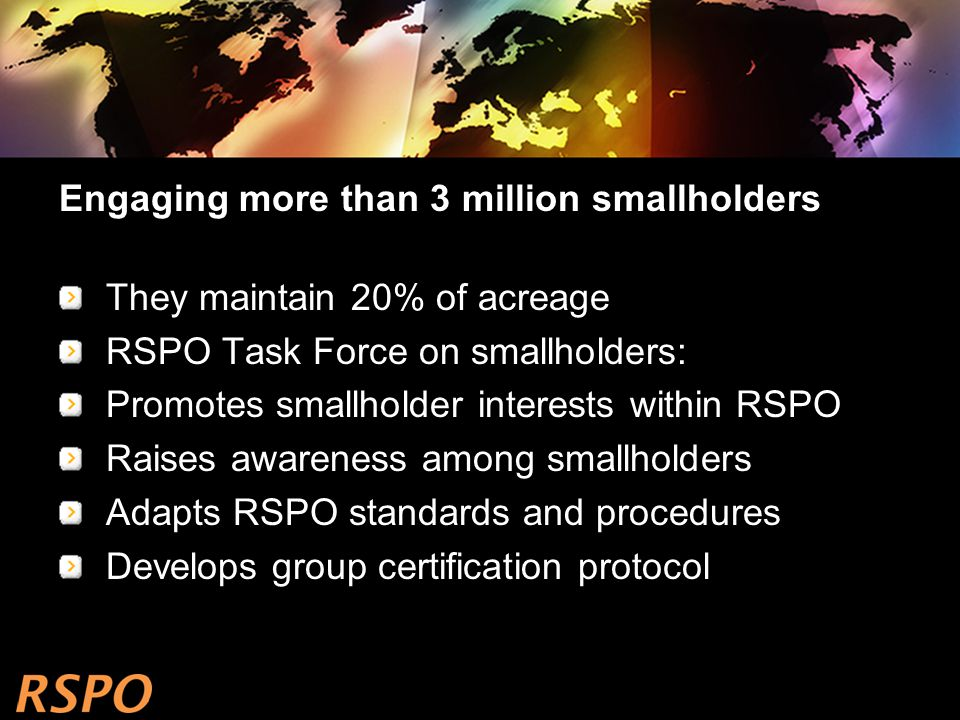 Engaging more than 3 million smallholders They maintain 20% of acreage RSPO Task Force on smallholders: Promotes smallholder interests within RSPO Raises awareness among smallholders Adapts RSPO standards and procedures Develops group certification protocol