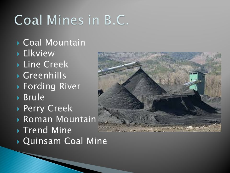  Coal Mountain  Elkview  Line Creek  Greenhills  Fording River  Brule  Perry Creek  Roman Mountain  Trend Mine  Quinsam Coal Mine