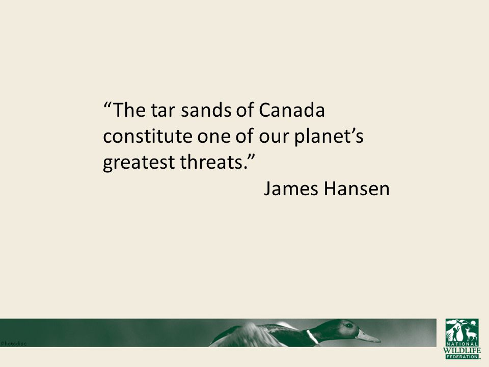 The tar sands of Canada constitute one of our planet's greatest threats. James Hansen
