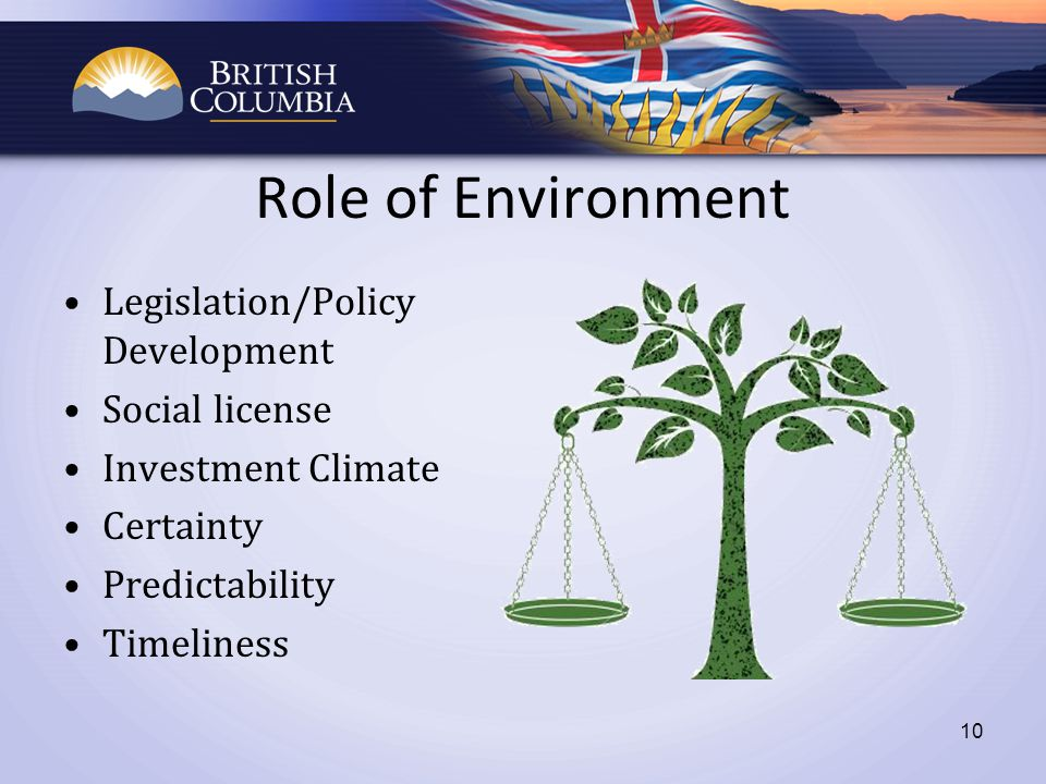 Role of Environment Legislation/Policy Development Social license Investment Climate Certainty Predictability Timeliness 10