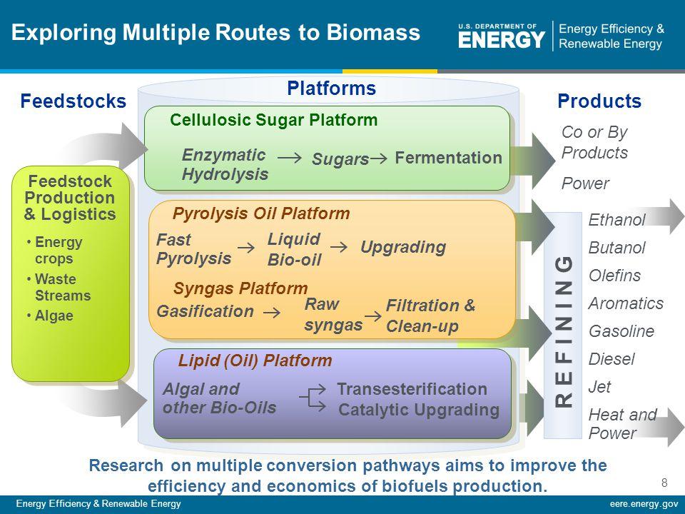 Energy Efficiency & Renewable Energyeere.energy.gov 8 R E F I N I N G Exploring Multiple Routes to Biomass Platforms Feedstock Production & Logistics