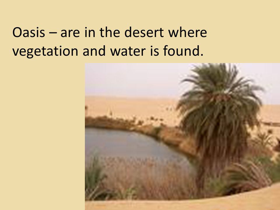Oasis – are in the desert where vegetation and water is found.
