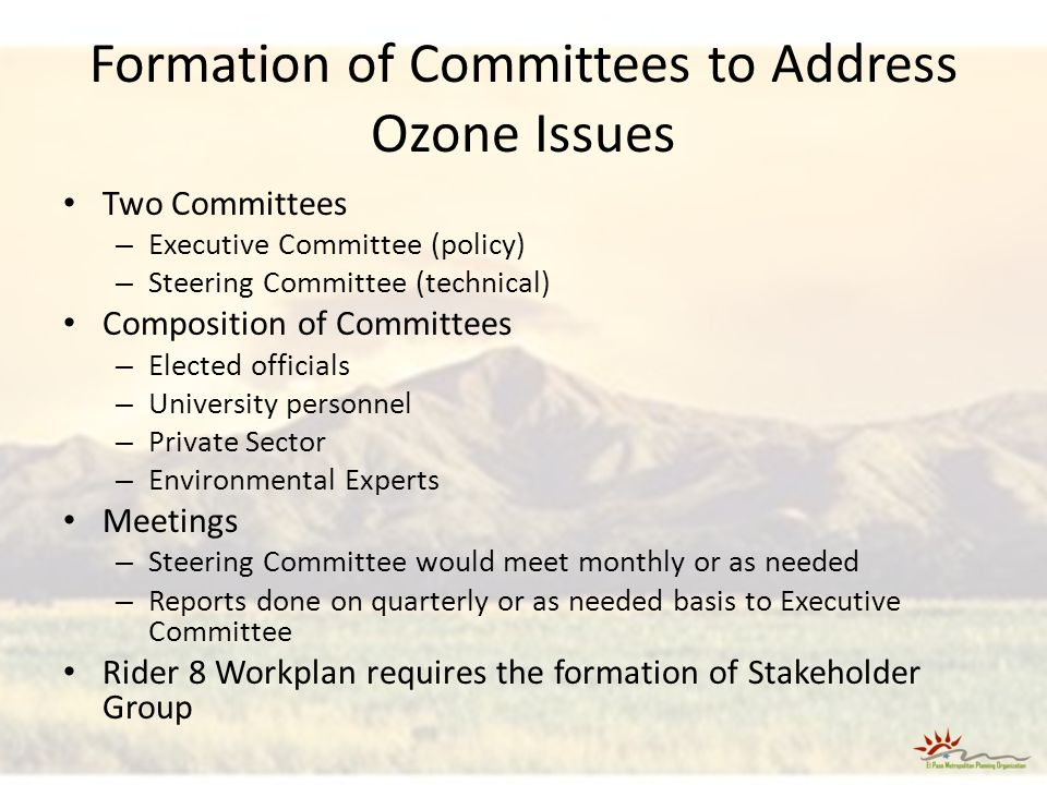 Formation of Committees to Address Ozone Issues Two Committees – Executive Committee (policy) – Steering Committee (technical) Composition of Committees – Elected officials – University personnel – Private Sector – Environmental Experts Meetings – Steering Committee would meet monthly or as needed – Reports done on quarterly or as needed basis to Executive Committee Rider 8 Workplan requires the formation of Stakeholder Group
