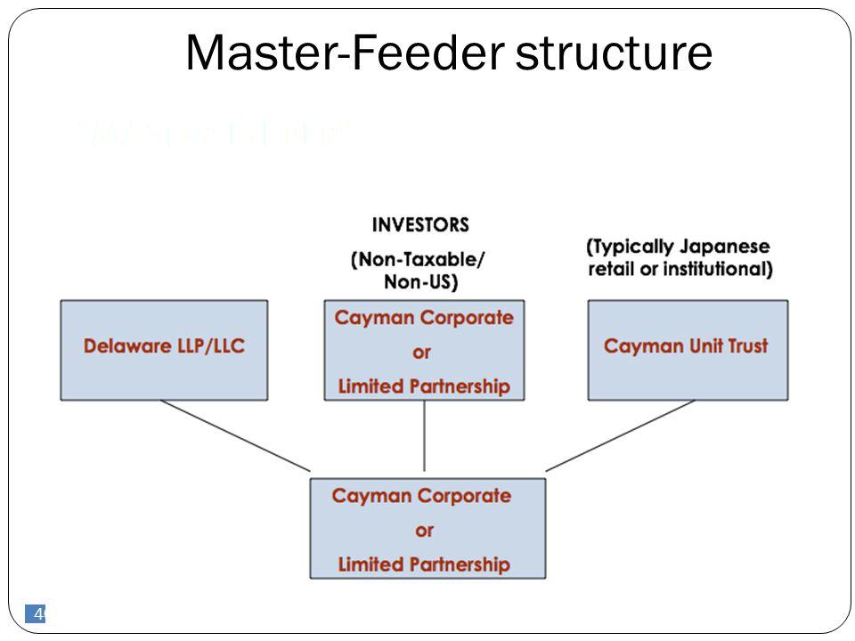 40 Master-Feeder structure 40