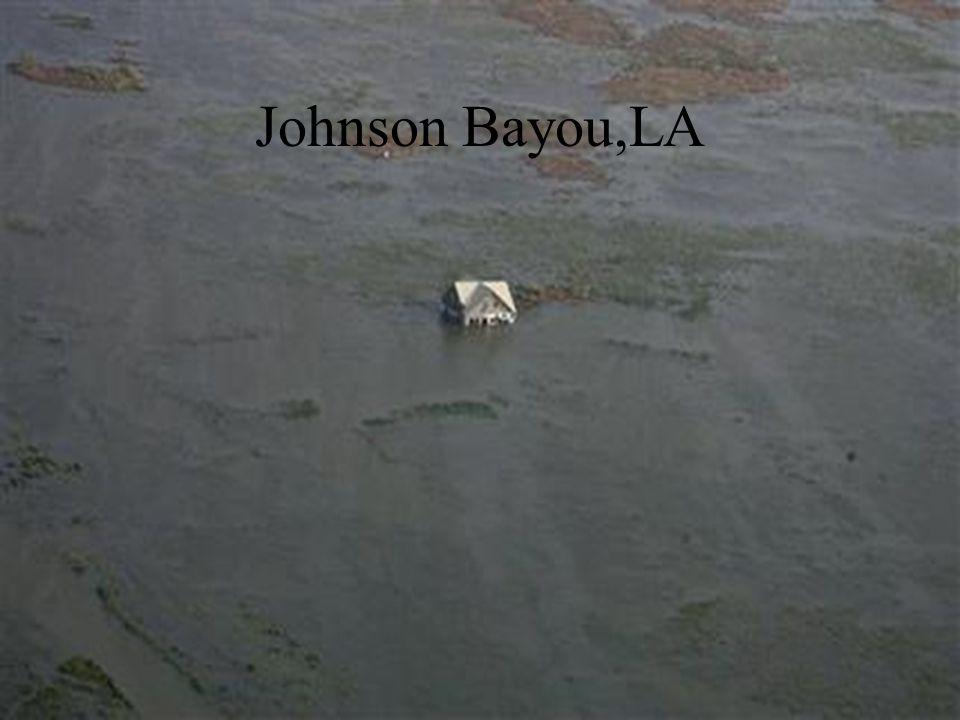 Johnson Bayou,LA