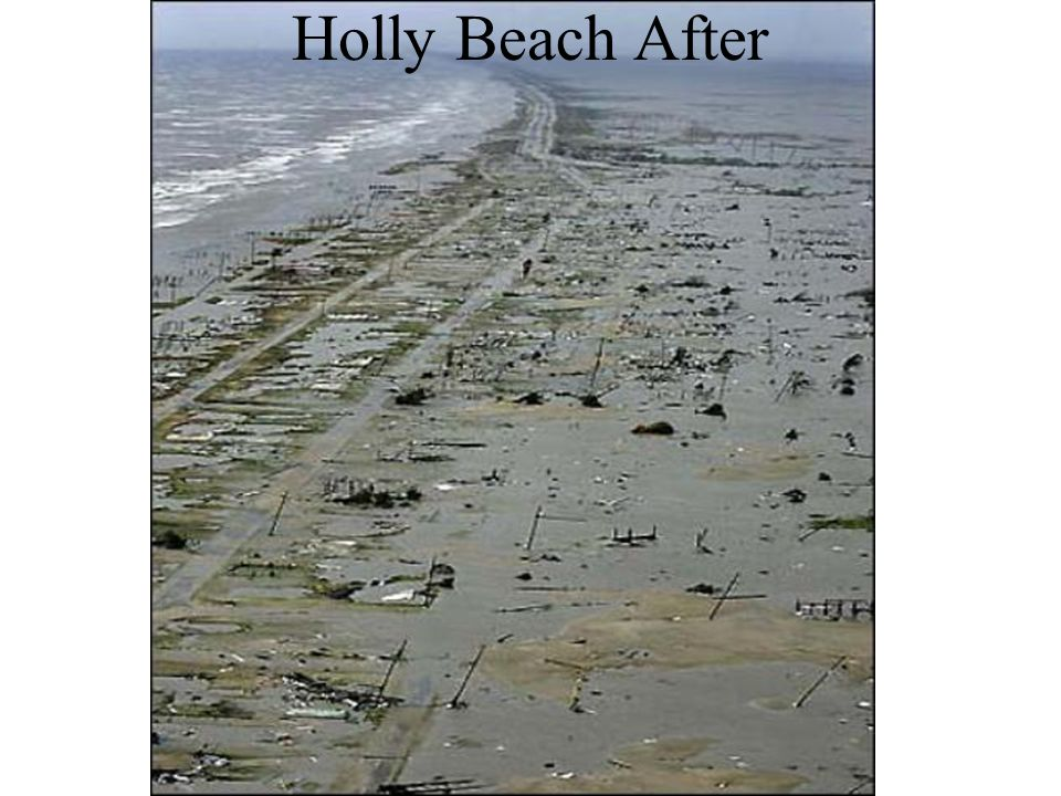 Holly Beach After