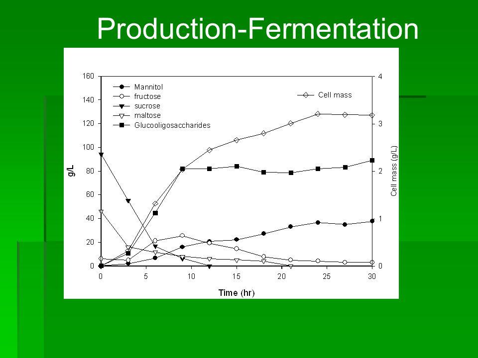 Production-Fermentation