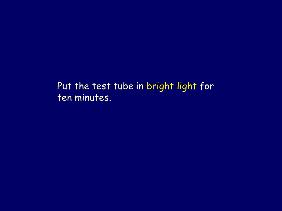 Put the test tube in bright light for ten minutes.
