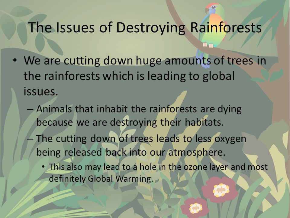 The Issues of Destroying Rainforests We are cutting down huge amounts of trees in the rainforests which is leading to global issues.