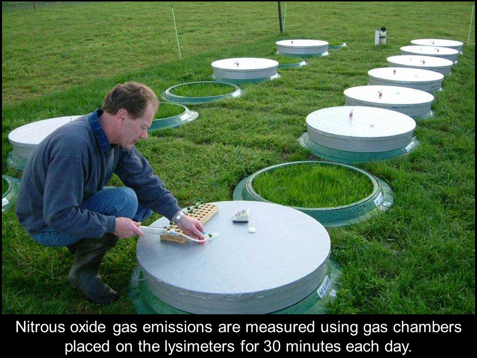 Nitrous oxide gas emissions are measured using gas chambers placed on the lysimeters for 30 minutes each day.