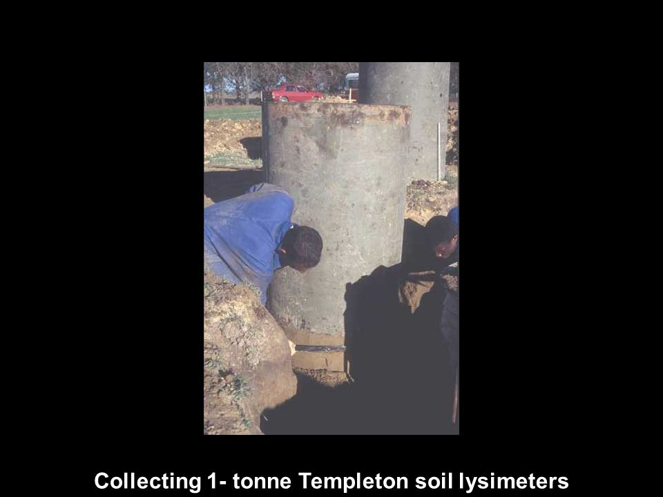 Collecting 1- tonne Templeton soil lysimeters